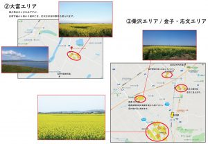 菜の花マップ20018_№2